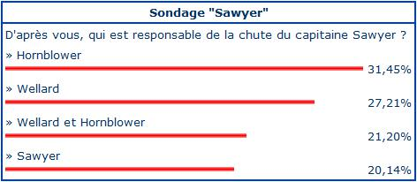 Sondage chute du capitaine Sawyer